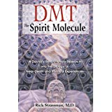 Dmt Spirit Moleculeby Rick Strassman