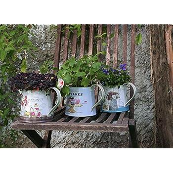 Janazala Small Flower Pots Indoor Decorative, Indoor Flower Pots, Set of 3 (Metal, Colorful)