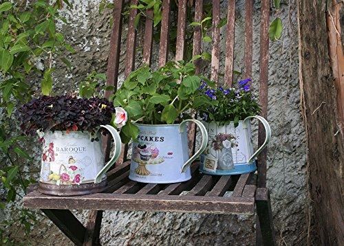 Janazala Small Flower Pots Indoor Decorative, Indoor Flower Pots, Set of 3 (Metal, Colorful) 1