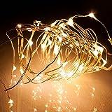 LEDジュエリーライト 5m 50球 電池式 常時点灯&点滅機能付き シャンパンゴールド