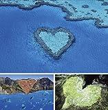 Nature's Hearts 自然のハートをあつめたポストカードセットB (写真工房ポストカード)