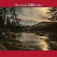 A Desolate Splendor Audiobook by John Jantunen Narrated by Graham Winton
