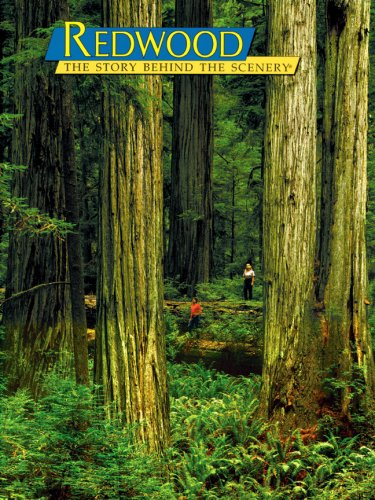 Redwood: The Story Behind the Scenery (English and German Edition)