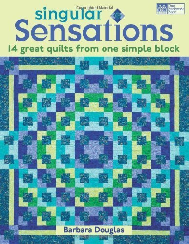 Singular Sensations: 14 Great Quilts from One Simple Block (That Patchwork Place) [Paperback]
