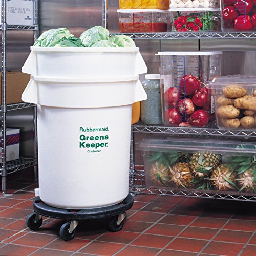 Industrial Food Container : Rubbermaid commercial greens keeper food storage container