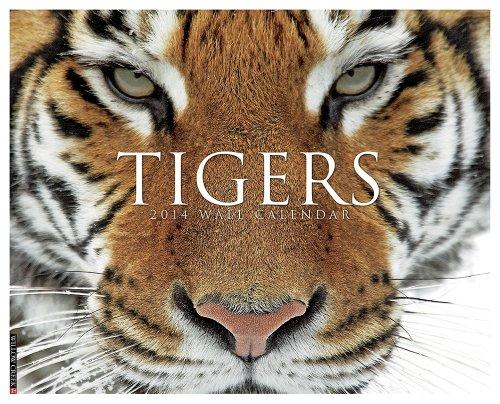 Tigers 2014 Calendar