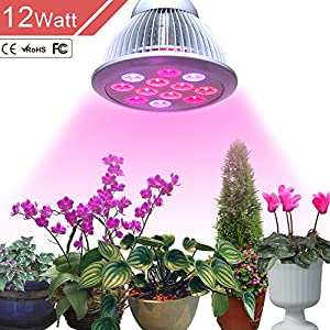 Outtled LED Grow Light 12W/24W, Highest Efficient Hydroponic LED Plant Grow Lights E27 Growing Lamp for Garden Greenhouse in Best 3 Bands Growing Combination (660nm and 630nm Red and 460nm Blue) (12W)