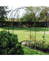 Kingfisher Arche de jardin pour plantes grimpantes et roses À monter soi-même