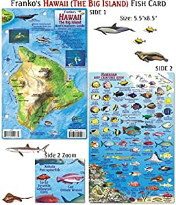 Hawaii Reef Creatures Fish ID for Scuba Divers and Snorkelers