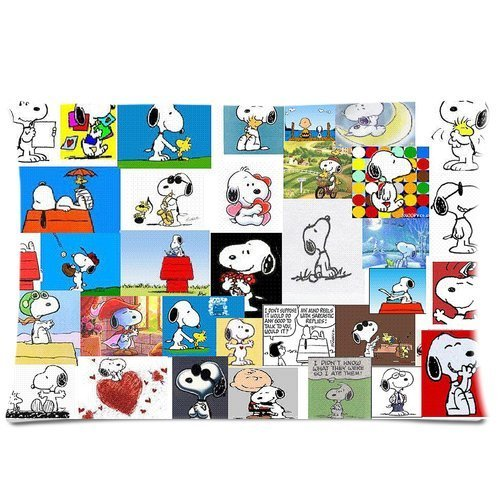 comic strip Peanuts Snoopy Charles M. SchulzZippered Pillow Cushion Cases Covers 20x30 (Twin sides)