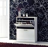 Home Source Shoe Cupboard White 2 Door Pull Down Cabinet Shoe Tidy Metal Handles Oxford