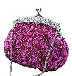 Chicastic Fully Sequined Mesh Beaded Antique Style Wedding Evening Formal Cocktail Clutch Purse - Fuchsia Pink
