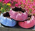Fairy Season Polka Dot Plush Pet Small Dog Kitten Bed Cushion Nest Random Color