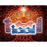 Posterhouzz Music Tool HD Fine Art Paper Print Wall Poster