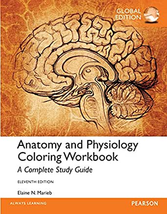 GUIDES STUDY AND PHYSIOLOGY ANATOMY