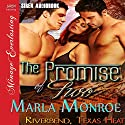 The Promise of Two: Riverbend, Texas Heat Audiobook by Marla Monroe Narrated by Audrey Lusk