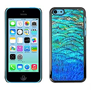 Omega Covers - Snap on Hard Back Case Cover Shell FOR Apple iPhone 5C - Teal Field Abstract Nature