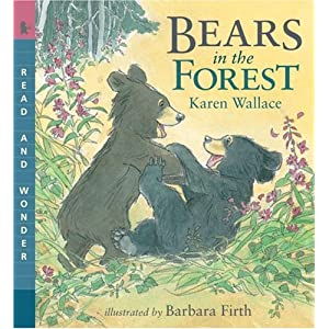 Bears in the Forest: Read & Wonder (Read and Wonder)