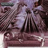 "Royal Scamvon ""Steely Dan"""