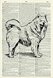 Samoyed Dog - Vintage ART PRINT - ART PRINT - Illustration - Animal Art Print - Pet Picture - Vintage Dictionary Art Print - Wall Hanging - Home Décor - Book Print - Dog Wall Art 24D