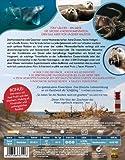 Image de Die Nordsee-Unser Meer [Blu-ray] [Import allemand]