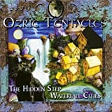 Waterfall Cities/The Hidden Step by Ozric Tentacles