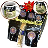 Dogs English Setter - English Setter - Coffee Gift Baskets - Coffee Gift Basket (cgb_3181_1)