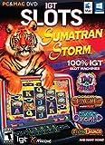 IGT Slots: Sumatran Storm