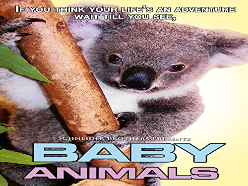 Baby Animals - Season 1