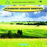 img - for Examining Meadow Habitats (Graphic Organizers: Habitats) book / textbook / text book