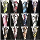 Weishang Lot 12 PCS Classic Men's 100% Silk Tie Necktie Woven JACQUARD Neck Ties(Style 5)