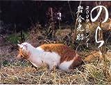 2009猫カレンダーのら