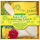 Sassafras / Kids Mini Lemonade Stand Kit