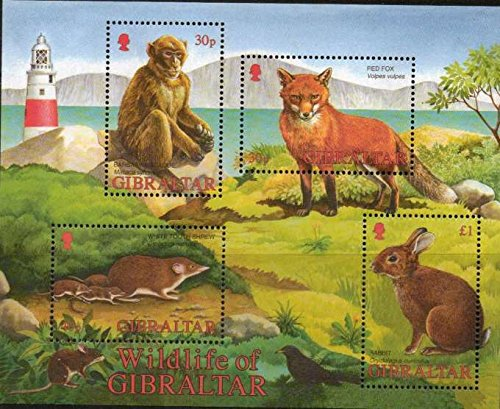 2002 Gibraltar Wildlife 4 Stamp Block depicting a White tooth Shrew, Barbary Macaque, Red Fox and a Rabbit Condition: VF MNH