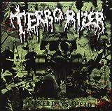 Darker Days Ahead by Terrorizer (2013-03-26)