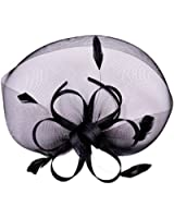 Womens Ladies Formal Feather Net Cocktail Hair Clip Fascinator