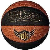 Wilson Derrick Rose Wave Composite Indoor and Outdoor Basketball (29.5-Inch)