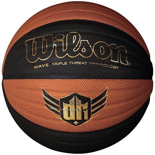 Wilson Derrick Rose Wave Composite Indoor and Outdoor Basketball (29.5-Inch)