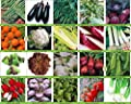 Viridis Hortus - 20 Packs of Vegetable Seeds - Tomato, Celery, Leek, Pea, Mustard Red Zest , Carrot, Chicory, Turnip etc