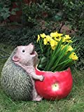 Wonderland Fat Hedgehog eating apple Flower Pot (Garden Planter, pots, garden animals, gifting )