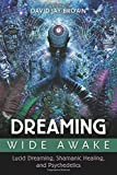 img - for Dreaming Wide Awake: Lucid Dreaming, Shamanic Healing, and Psychedelics book / textbook / text book
