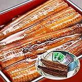 築地魚群 浜名湖うなぎ 蒲焼きセット(2人前) 国産鰻 ランキングお取り寄せ