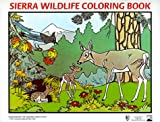 Sierra Wildlife Coloring Book