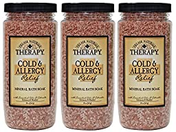 Village Naturals Therapy Cold & Allergy Mineral Bath Soak 20 oz (3)