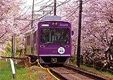 特選 四季の詩 1000スモールピース 嵐電 -桜の季節- (38cm×53cm、対応パネルNo.5-B)