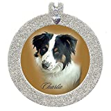 Pet Remembrance Magnetic Glitter Holiday Photo Ornaments, Round, Silver