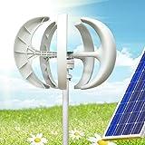 DONSU Wind Turbine 600W 12V Wind Turbine Generator White Lantern Vertical Axis Garden Boat Wind Generator 5 Leaves Wind Turbine Kit with Controller