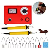 TOPCHANCES Wood Pyrography Craft Tool Kit,Digital Multifunction Pyrography Machine 50W Variable Temperature Control Wooden Crafts Set with 2 Pcs Pyrography Pen and 20 Pcs Pyrography Tips,110V US Plu (Color: Pyrography Kit)