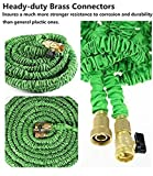 SpeedControl Highly Expandable Watering Garden Hose 75 Feet with Brass Connector and Spray Nozzle