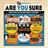 Are You Sure - Great British Record Labels Fontana